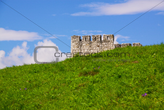 Green meadow with ruins in the background
