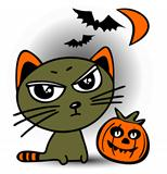 halloween cat