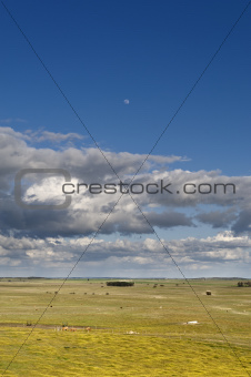 Alentejo landscape