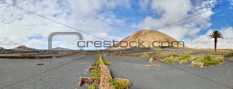 Volcano-agricultural landscape of the Lanzarote