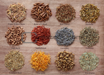 Magical and Medicinal Herbs