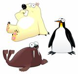 Polar animals in different poses and expressions.