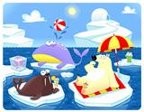 Summer or Winter at the North Pole.