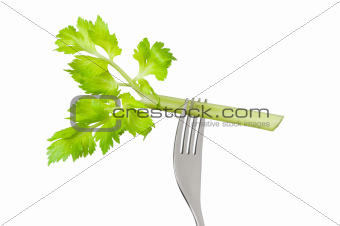 celery stalk on fork isolated