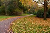 narrow path in autumn park