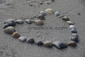 Heart made of sea shells at the beach