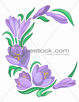Frame from abstract crocuses