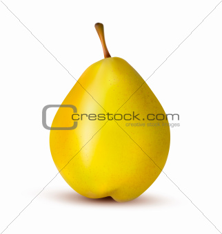 Ripe pear isolated on white. Vector illustration