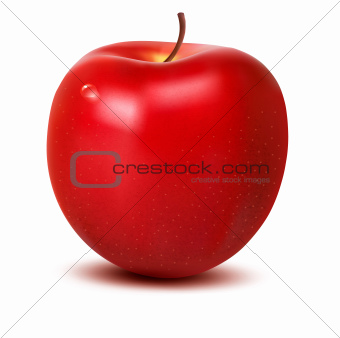 Fresh apple with green leaf. Vector illustration