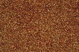Buckwheat Background or Texture
