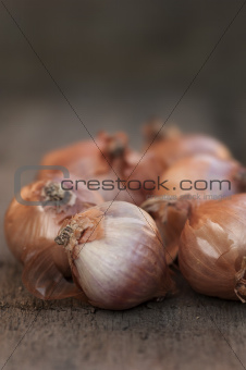 Onion shallots on vintage wooden board