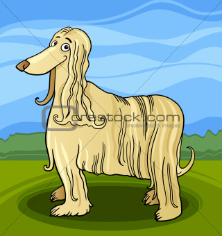 cartoon afghan hound dog