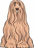 bearded collie dog cartoon illustration