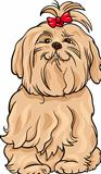 maltese dog cartoon illustration