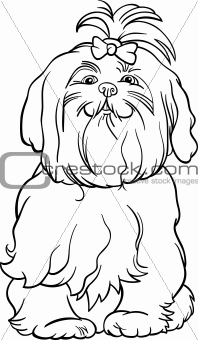 maltese dog cartoon for coloring book
