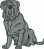 neapolitan mastiff dog cartoon illustration