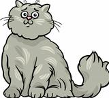 persian cat cartoon illustration