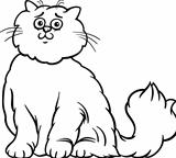 persian cat cartoon coloring page