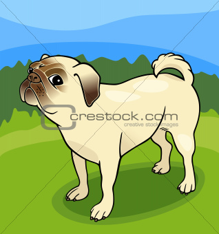 pug dog cartoon illustration