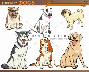 purebred dogs cartoon illustration set