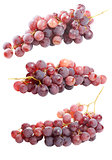 Tasty bunch of red grapes, isolated