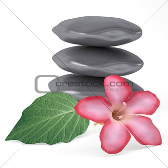Stones, flower and leaf