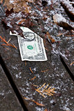 forgotten dollar
