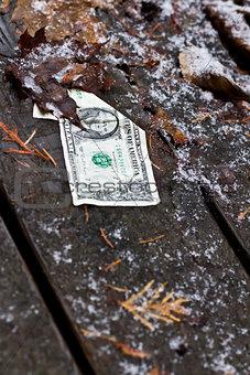 forgotten dollar
