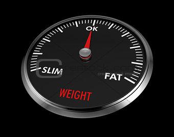 speedometer - weight