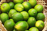 Closeup of many lime fruits
