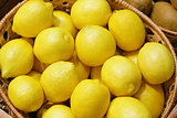 Closeup of many yellow lemon fruits