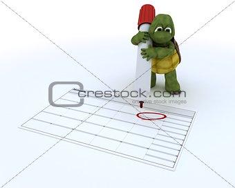 tortoise with a calendar