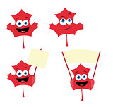 cute maple leaf in different poses