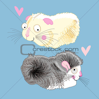 fun loving hamsters