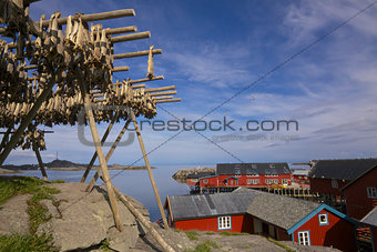 Stockfish on Lofoten