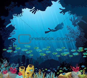 Underwater life - Coral reef diver and fish