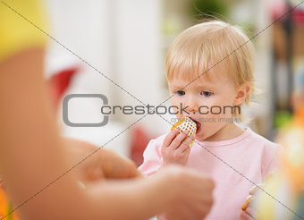 Baby eating Easter cookie