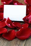 Petals of a red rose and a card for recording