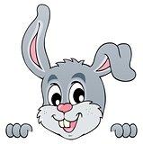 Image with rabbit theme 5