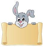 Image with rabbit theme 7