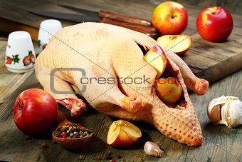 Eviscerated duck, apples and spices.