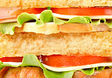 Background of delicious sandwich