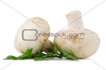Champignon mushrooms and parsley leaves