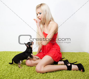 Beautiful female blonde feeds on small dog. Studio shot