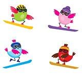 Birds on snowbords