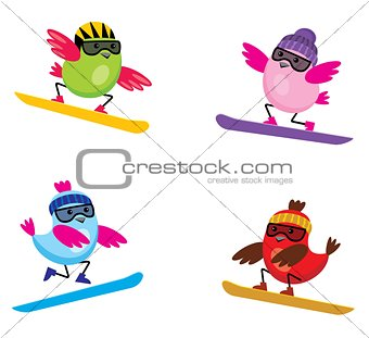 Birds on snowbords