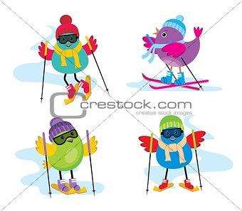 Skiing birds