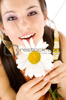 chamomile in hands