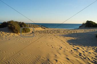 Costal dunes