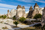 Group of fairy chimneys Pasabagi - typical rock formation in Goreme, Cappadocia, Turkey
